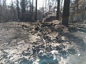 Stanthorpe Fires